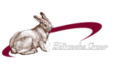 the burroughs group logo