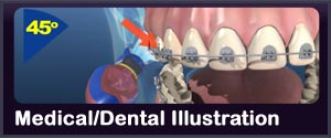 medical dental custom illustration